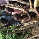 Kids in Krall