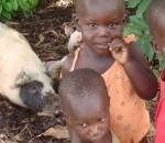 Ugandan kids and pigs